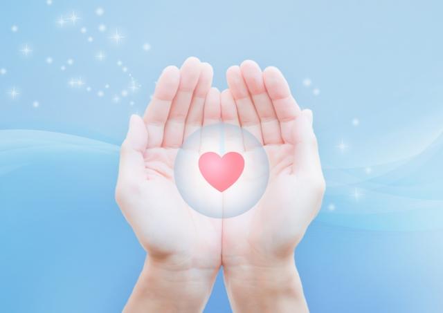心と体の接触面は3つの機能原理によって支配されている!?
